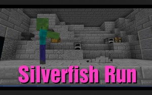 Descargar Silverfish Run para Minecraft 1.13.1